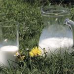 """""""Latte: Elemento fondamentale della nutrizione"""""""
