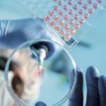 Innovazione e salute, alla Marittima il meglio di prodotti e servizi biohightech