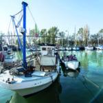Gac Fvg: contributi per la pesca