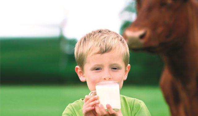 """""""Latte nelle Scuole"""" per conoscere e imparare divertendosi"""