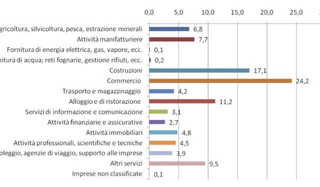 """A Gorizia maggior peso del """"primario"""". Trieste, elevata concentrazione nei servizi"""
