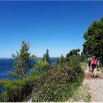 """""""Walk&Play"""", il 25 luglio                        la caccia al tesoro                lungo la costiera triestina"""